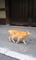 三浦理恵子 プライベート画像 61〜78件 081901