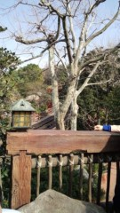 川崎健希 公式ブログ/昨日わ… 画像3