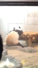 川崎健希 公式ブログ/上野動物園に行って来ました 画像1