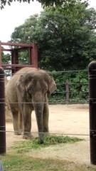 川崎健希 公式ブログ/上野動物園に行って来ました 画像2