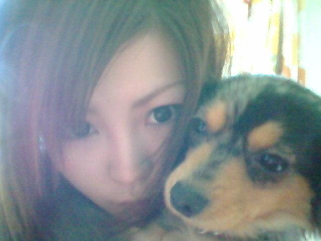 おはようわんo(^ ∀^)o
