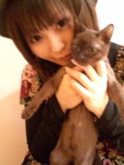 彩原ゆい プライベート画像/彩原ゆいのアルバム1 2011.1〜 ねこちゃんと(*^_^*)