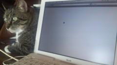 桜京子 公式ブログ/Mac×Mac 画像1