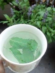 桜京子 公式ブログ/Quickmade mint tea★ 画像1