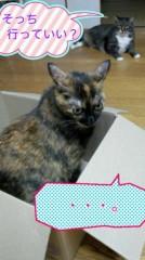 桜京子 公式ブログ/猫会話★ 画像1