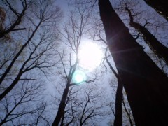 上杉豪 公式ブログ/おはようございます! 画像3
