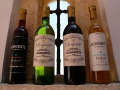 SORGENTI 公式ブログ/制作そしてワイン 画像1