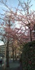 岸村ユウスケ 公式ブログ/美しい風景 画像1