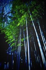 石田美菜子 公式ブログ/散歩でぐるぐる。 画像3