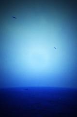 石田美菜子 公式ブログ/久しぶりに見た海☆ 画像1