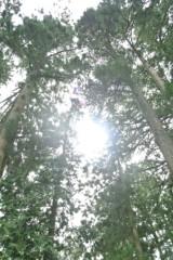 石田美菜子 公式ブログ/新しい月(o^^o) 画像1