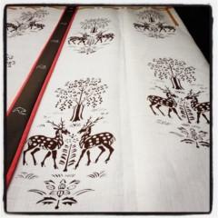 石田美菜子 公式ブログ/奈良で 画像1