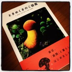 石田美菜子 公式ブログ/ときめくきのこ図鑑 画像1