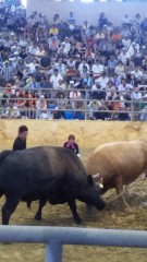KONISHIKI 公式ブログ/Bull Fight 画像1