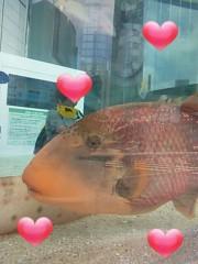 あらいすみれ 公式ブログ/銀座の水族館♪ 画像2