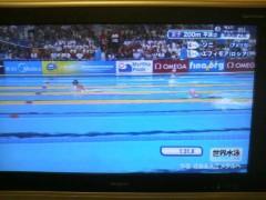 あらいすみれ 公式ブログ/世界水泳 画像1