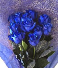 あらいすみれ 公式ブログ/青い薔薇 画像1