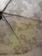 あらいすみれ 公式ブログ/傘 画像1