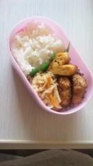 内海亜耶乃 公式ブログ/お弁当☆ 画像1