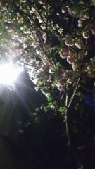 吉祥丸 公式ブログ/バーベキュー 画像3