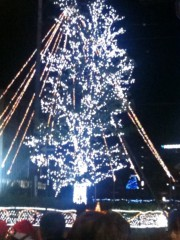 井上正夫 プライベート画像 光の木
