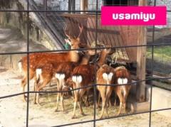宇佐見ゆう 公式ブログ/動物園! 画像2
