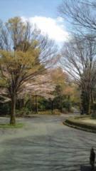 西尾夕紀  公式ブログ/お支度中( ´_ゝ`) 画像2