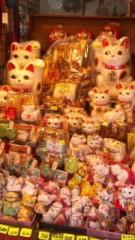 中村純子 公式ブログ/日帰りちぃ散歩3猫 画像1
