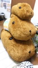 中村純子 公式ブログ/カピバラさん着ぐるみ 画像1