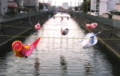 中村純子 公式ブログ/およぐおよぐ鯉のぼり〜 画像1