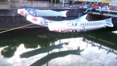中村純子 公式ブログ/およぐおよぐ鯉のぼり〜 画像2