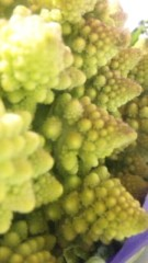 中村純子 公式ブログ/なんだ!?スーパーで見たこの野菜(◎o◎) 画像1
