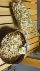 中村純子 公式ブログ/冷蔵庫ある生活 画像2