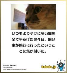 中村純子 公式ブログ/ニャンぼけ 画像3