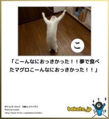 中村純子 公式ブログ/ニャンぼけ 画像1
