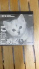 中村純子 公式ブログ/猫めくり1999 画像2
