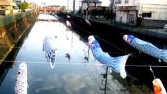 中村純子 公式ブログ/およぐおよぐ鯉のぼり〜 画像3