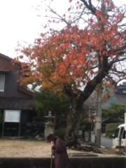 中村純子 公式ブログ/ま… 画像1