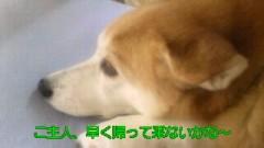 中村純子 公式ブログ/秋は連休が多いな 画像1