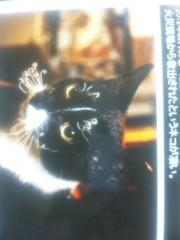 中村純子 公式ブログ/にゃんこのヒゲがぁああああ! 画像1