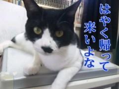 中村純子 公式ブログ/まだまだアシスタント修羅場中 画像1