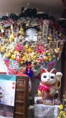 中村純子 公式ブログ/日帰りちぃ散歩3猫 画像3