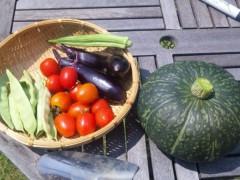 中村純子 公式ブログ/収穫野菜第一弾&料理 画像1