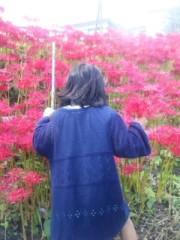 中村純子 公式ブログ/残暑まつり 画像1