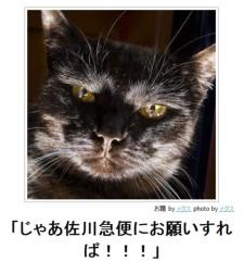 中村純子 公式ブログ/ニャンぼけ 画像2