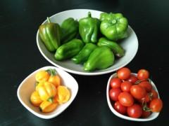 光宣 公式ブログ/まだまだとれる夏野菜 画像1