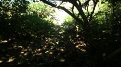 光宣 公式ブログ/今朝の小浜はくもり 画像3