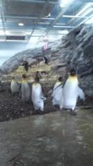 大高栞奈 公式ブログ/ペンギン 画像1