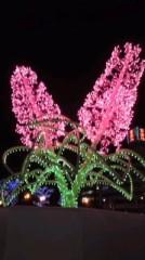 大高栞奈 公式ブログ/クリスマスパーティ 画像2