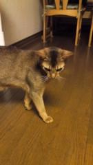 大高栞奈 公式ブログ/肩痛い(笑) 画像3